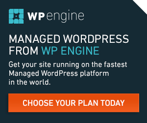 wp engine,wpengine,web hosting